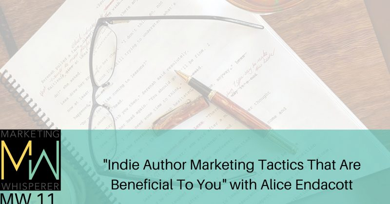 """Indie Author Marketing Tactics That Are Beneficial To You"""